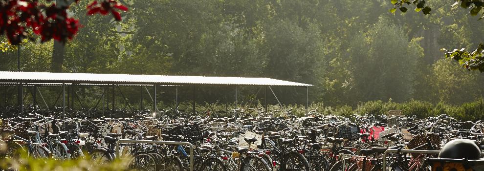 Op de fiets naar het kamp